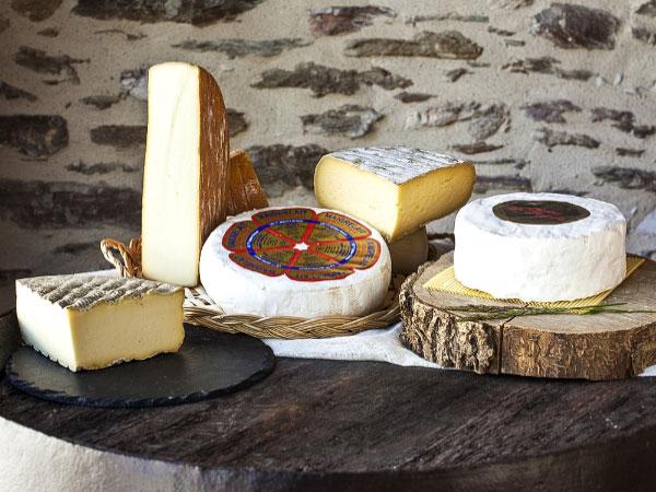 Artisans et producteurs du Haut Languedoc. Fromages des Monts de Lacaune. Présentation 1