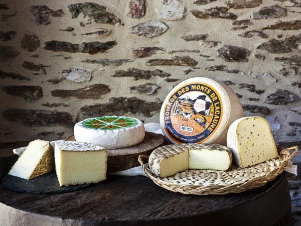 Artisans et producteurs du Haut Languedoc. Fromages des Monts de Lacaune. Présentation 2