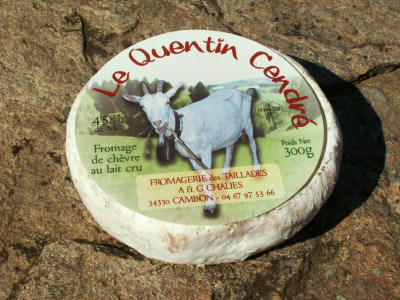 Fromages de chèvre de la ferme Les Taillades. Quentin cendré